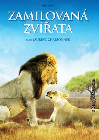 DVD: Zamilovaná zvířata