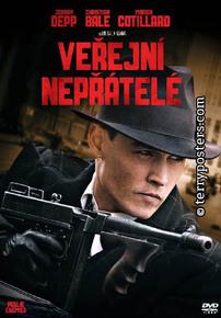 DVD: Veřejní nepřátelé