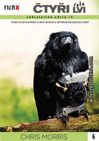 DVD: Čtyři lvi