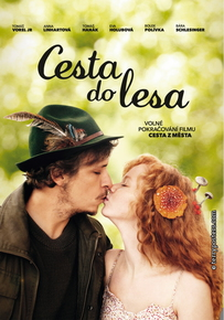 DVD: Cesta do lesa