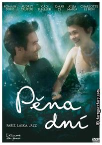 DVD: Pěna dní